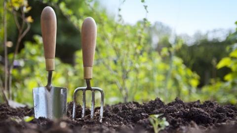 Garden tool maintenance - useful tips for passionate gardeners1