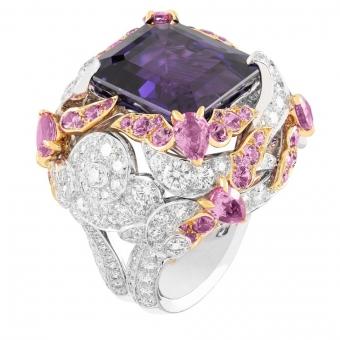 The Bianfu Ring