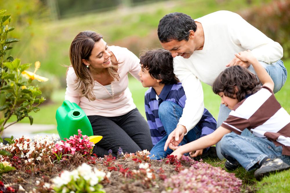 Цветы для, картинки забота о детях